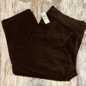 NWT Gloria Vanderbilt Amanda brown corduroy jeans